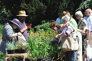 Pflanzenmarkt Bot. Garten